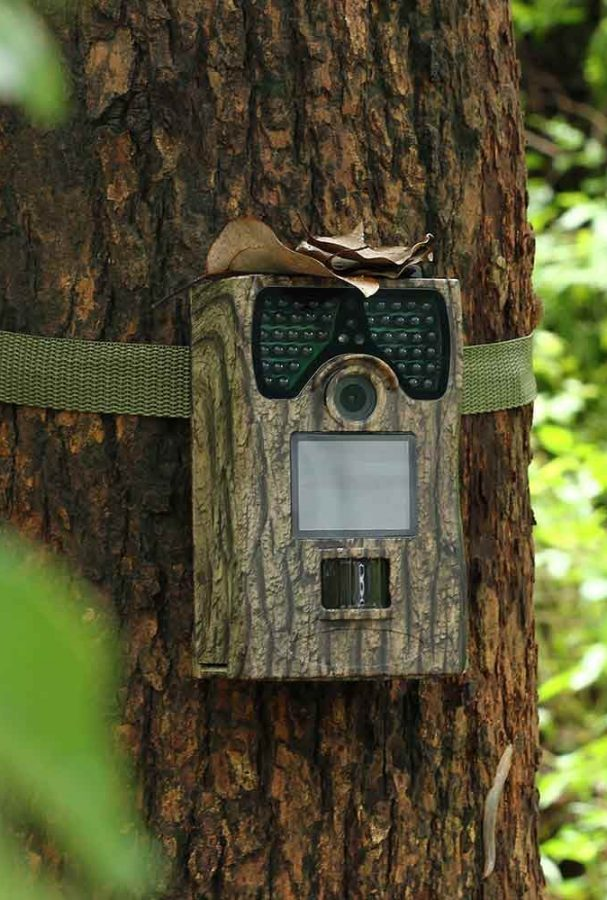 GearHunting-lw12c-12mp-hd-infrared-hunting-trail-camera-with-120-degree-wide-angle- (7)