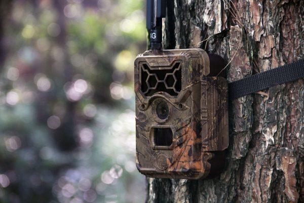 WildGuarder-Watcher1-series-hd-trail camera- (7)